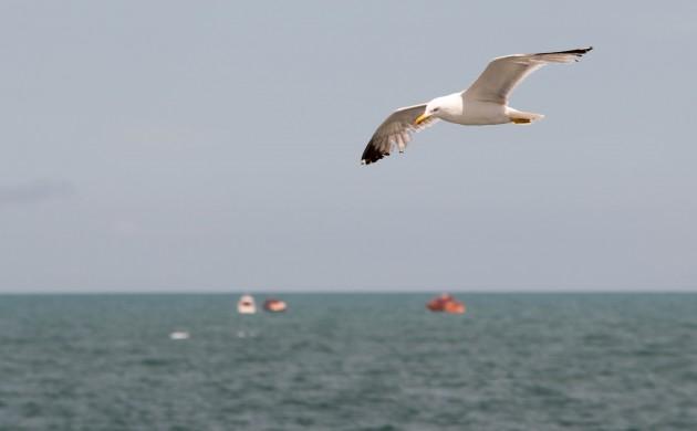 Primul Ceremonial de comemorare a unui navigator, din istoria yachtingului românesc