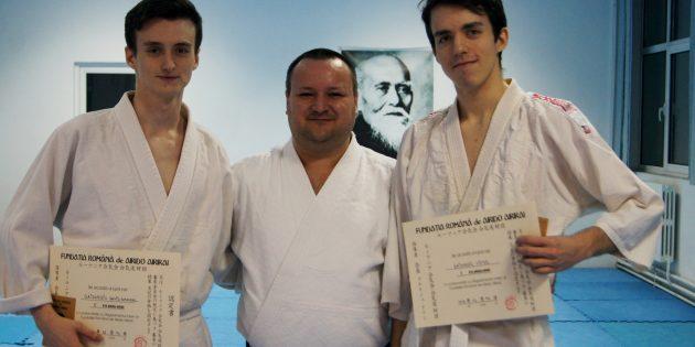 Aikido, între admirație și critici